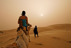 Camel safari. Through a the haze caused by a sand storm Royalty Free Stock Photos