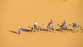 Camel safari in Sahara stock photo