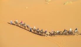 Camel safari in Sahara stock photos