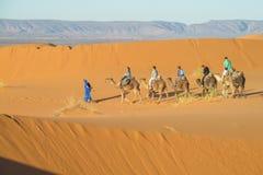 Camel safari in Sahara stock images