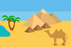 Camel in Sahara desert with the pyramids and palm Royalty Free Stock Photography