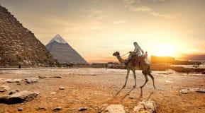 Pyramids landscape Egypt. Camel in sandy desert near mountains at sunset stock image