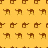 Camel seamless pattern background Royalty Free Stock Photo