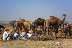 Camel sellers. At camel fair, Pushkar, Rajasthan, India stock image