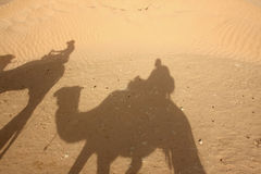 Camel shadows in desert Royalty Free Stock Photos