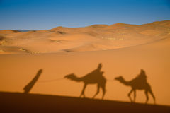 Camel shadows on Sahara Desert sand in Morocco. Stock Images