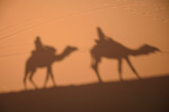 Camel shadows on Sahara Desert sand in Morocco. Royalty Free Stock Image