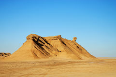 Camel shaped sand dune. Photo of a sand dune with the shape of a camel taken in Sahara desert Royalty Free Stock Images