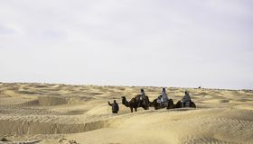 Camel. Show tourists the camel caravan in the desert photo Royalty Free Stock Image