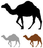 Camel silhouette vector illustration