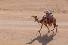 Camel on street of Cairo. Man with child riding camel on street of Cairo, Egypt Stock Photos