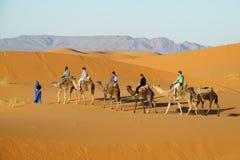 Camel tourist caravan in desert Stock Image