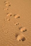 Camel traces in the desert stock photos