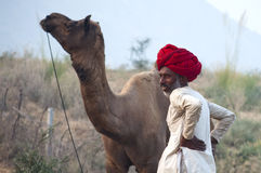 The camel trader with his camel. A camel trader of Pushkar, Rajasthan, India with his camel Stock Image
