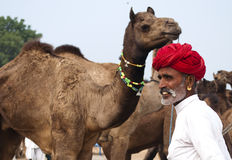 The camel trader of Pushkar. A man with a red turban is standing by his camel in fair ground of pushkar , Rajasthan, India Royalty Free Stock Photos