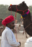 The camel trader of Pushkar. Camel trader of Pushkar, Rajasthan, India wearing red turban standing beside his beautifully decorated camel Stock Photos