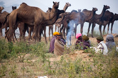 The camel traders of Pushkar. Camel traders of Pushkar, Rajasthan, India wearing turbans sitting on the fair ground Stock Photography
