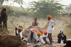 The camel traders of pushkar. Camel traders of Pushkar, Rajasthan, India wearing yellow turbans sitting on the fair ground Royalty Free Stock Images