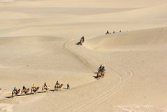 Camel train in desert Stock Photo