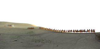The camel train Royalty Free Stock Photography