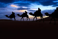 Camel train silhouetted colorful sky Sahara desert Royalty Free Stock Photography