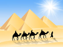 Camel travel Royalty Free Stock Images