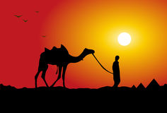Camel traveling. Illustration art of a camel traveling with evening background Stock Photography