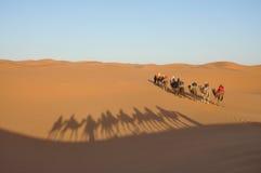 Camel trip in Sahara desert Stock Photography