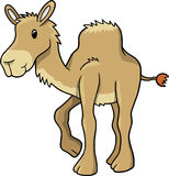 Camel Vector Illustration Stock Photography