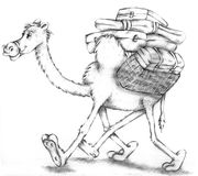 Camel walking with suitcases Pencil illustration humorist and realist Stock Image