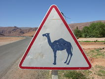Camel warning sign Royalty Free Stock Photo