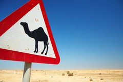 Camel warning sign Royalty Free Stock Photography