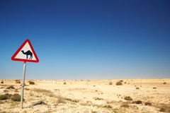 Camel warning sign Royalty Free Stock Photos