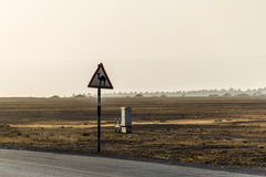 Camel warning sign desert highway in dhofar salalah Oman Middle East 5 Royalty Free Stock Image