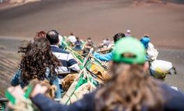 Camelcade on Lanzarote Stock Photo