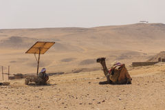 Cameleer和骆驼和沙漠景色在吉萨棉金字塔,开罗e的 库存照片