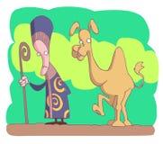 cameleer Arkivbild