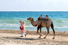Cameleer. The drover with a camel go on seacoast Royalty Free Stock Images