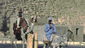 Cameleer archivistique de temple de vallée banque de vidéos