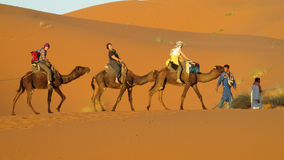 Cameleer with camel caravan in desert Royalty Free Stock Photography