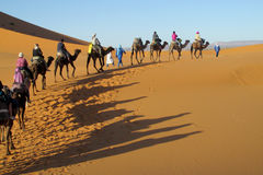 Cameleer with camel caravan in desert Stock Photos