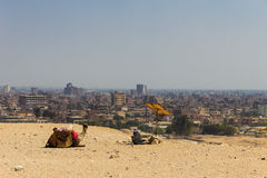 Cameleer and camel  and city view at giza pyramid , cairo in egy Royalty Free Stock Photography