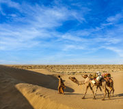 Cameleer (camel driver) with camels in dunes of Thar desert. Raj Royalty Free Stock Images