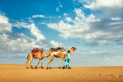 Cameleer camel driver with camels in dunes of Thar Royalty Free Stock Photos