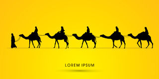 Cameleer with camels. Graphic vector Stock Images