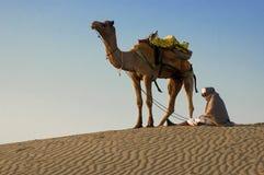 Cameleer chez Sam Sand Dune, désert de Thar Image stock