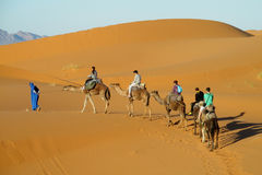 Cameleer con il caravan del cammello in deserto Fotografie Stock