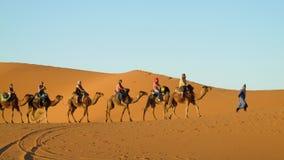 Cameleer con il caravan del cammello in deserto Fotografia Stock
