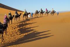 Cameleer con la caravana del camello en desierto Fotos de archivo