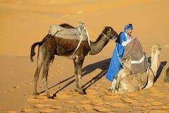 Cameleer die kameel voor de rit voorbereiden Royalty-vrije Stock Foto's